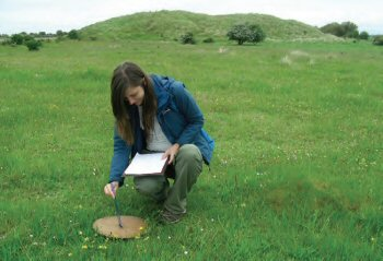 Surveying a Marsh Moth habitat
